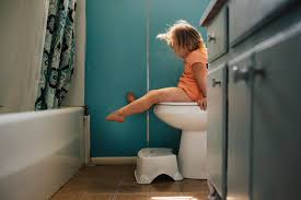 How to Potty <b>Train</b> Your Child in Just 3 Days