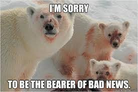 Image result for bear puns