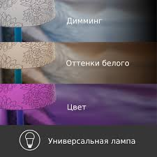 KL130 | Умная <b>лампа Kasa</b> с регулировкой цвета | <b>TP</b>-<b>Link</b> Россия