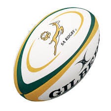 Image result for rugby south africa