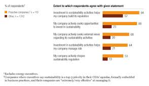 How companies manage sustainability  McKinsey Global Survey     McKinsey