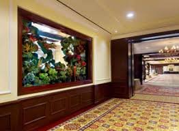 office and restaurant aquariums provide endless hours of entertainment for your clients and staff they are also a great way to add a unique and hassle free aquarium office