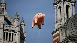 The floating pig that became a sign of protest - BBC Culture
