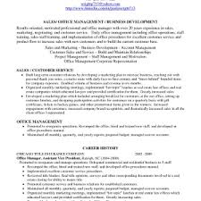 profile for resume example profile resume sample profile on resumes examples sholll career profile resume examples