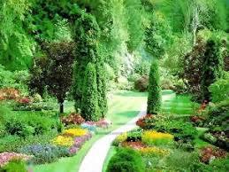 Resultado de imagem para jardins do paraiso