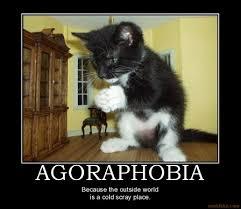 agoraphobia_agoraphobia_demotivational_poster_1226323682-0f4c413756320e0e3d8f5162c769084b.jpg via Relatably.com