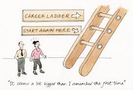 career steps to a second career energise liberateyourtalent s cartoon 14 career ladder