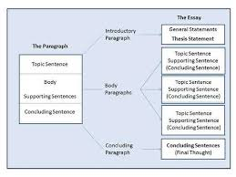 essay organization types  www gxart orgorganizational structure essaybasically there are four main types of academic essays there are many types of