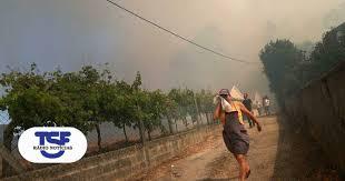 PJ detém suspeito de atear fogos em Penedono e Sernancelhe