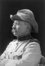 compare theodore roosevelt s square deal woodrow wilson s theodore roosevelt crop of image theodore roosevelt 1898