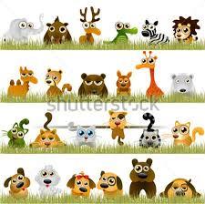 Resultat d'imatges de imatges animals