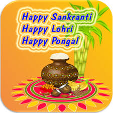 Image result for happy pongal and makar sankranti