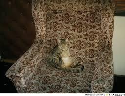 my lazy cat...... - Meme Generator Funny via Relatably.com