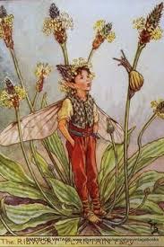 259 Best <b>Beautiful flower fairies</b> images in 2015   <b>Flower fairies</b> ...