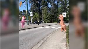 <b>T</b>-<b>rex</b> and <b>unicorn</b> meet on a Coquitlam traffic island. Hilarity ensues ...