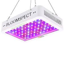 BLOOMSPECT <b>600W Led</b> Grow Lights Review