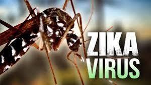 Resultado de imagen para zika embarcacion