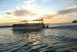 Thanksgiving Sunset Dolphin & Wildlife Cruise - The Beaches of ...
