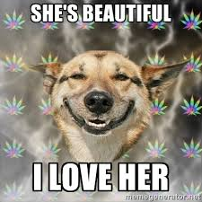 she's beautiful i love her - Stoner Dog | Meme Generator via Relatably.com