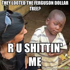 they looted the ferguson dollar tree? r u shittin' me - Skeptical ... via Relatably.com
