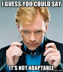 I guess you could say It's not adaptable - David Caruso CSI | Meme ... via Relatably.com