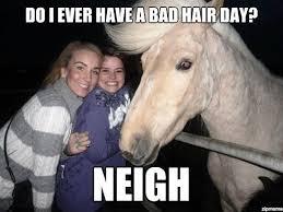 Ridiculously Funny Animal Memes for 2013   Animals Zone via Relatably.com