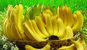 Image result for banana fruit mauritius