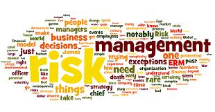 Risk Management Quotes | Riskviews