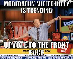 Moderately Miffed Kitty is trending : AdviceAnimals via Relatably.com