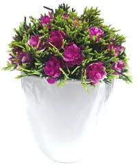 <b>Растение искусственное в</b> керамическом горшке WPF201930 ...