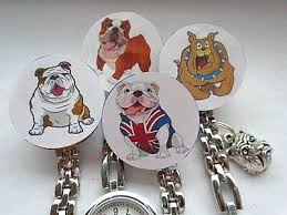 Nurse Watch Vet Nurse English <b>Bulldog Cartoon</b> Clip on Brooch ...