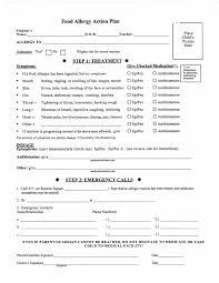 caterpillars ladybugs mmo preschool programs credit card authorization form