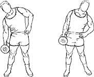 Image result for abdominal lateral com peso