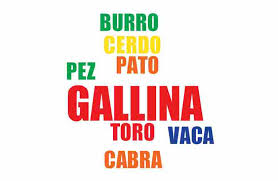 Resultado de imagen para vocabulario de animal chileno