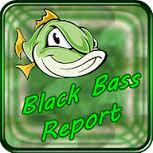 Resultado de imagem para IMAGENS DE RECEITAS DE black BASS