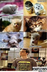 Soft Kitty by tylertrollroberts - Meme Center via Relatably.com