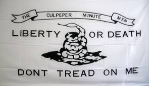 Image result for dont tread on me flag