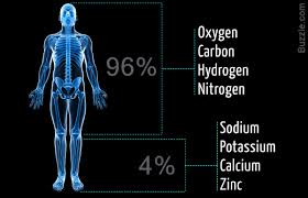 you ll be amazed by these examples of chemistry in everyday life composition of the human body