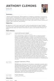insurance agent resume samples   visualcv resume samples databaselicesnced insurance agent resume samples