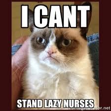 I cant stand lazy nurses - Tard the Grumpy Cat | Meme Generator via Relatably.com