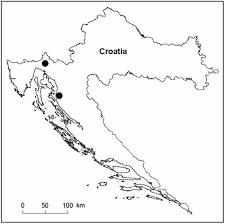 FESTUCA PULCHELLA SCHRAD. IN CROATIA