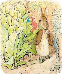 Image result for garden of beatrix potter