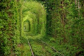 C'est de toute beauté : sites et lieux magnifiques de notre monde.  Images?q=tbn:ANd9GcTjzGuRBT_LHLghW1UZA7FtOc5CZdMYNgK4ab5zBQ_aN4ehiwCqYg