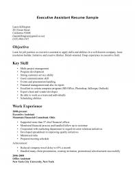 resume template  bartending resume objective resume template    bartending resume objective   executive assistant experience