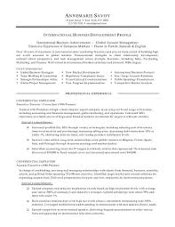 sample resume business entrepreneur resume builder sample resume business entrepreneur resume sample business analyst resume page 1 international marketing international business