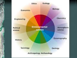 essay on multidisciplinary nature of environmental studies  essay   essay on multidisciplinary nature of environmental studies  image
