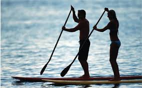 Image result for paddle board