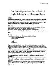 an investigation on the effects of light intensity on