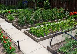 Small Picture 115 best Raised Garden Beds images on Pinterest Gardening