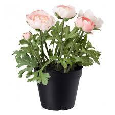 <b>Искусственное растение</b> в горшке IKEA FEJKA 12 см <b>лютик</b> ...